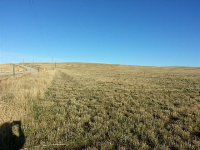 Lot 7 Patterson Ranch Road, Roberts, MT 59070 (MLS #271967) :: Realty Billings