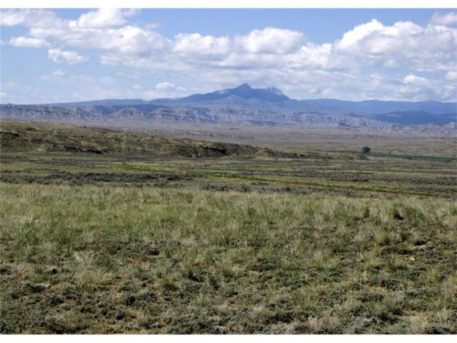 NHN Richland Trail, Powell, Wy, Other-See Remarks, MT 82414 (MLS #273355) :: Realty Billings
