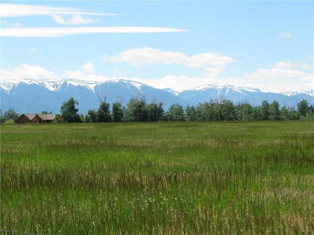 Lot 5 Clear Creek Road, Roberts, MT 59070 (MLS #273579) :: Realty Billings