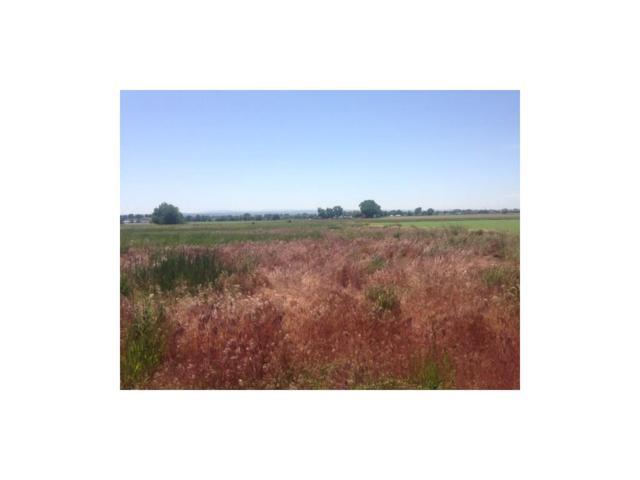 2132 S Stone Creek Trail, Billings, MT 59106 (MLS #274816) :: Search Billings Real Estate Group