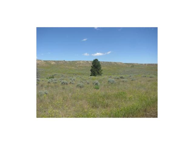 Lot 49 Snowflake, Roundup, MT 59072 (MLS #275040) :: Realty Billings