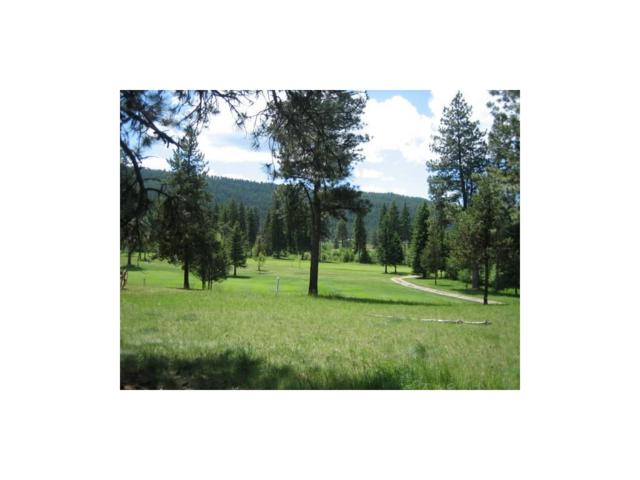 NHN Golf View Dr, Seeley Lake, Other-See Remarks, MT 59868 (MLS #277356) :: Realty Billings