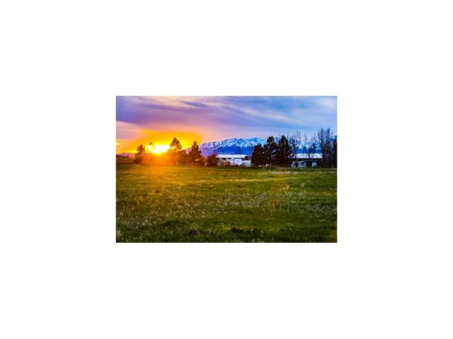 Lot 23 Mallard Springs, Big Timber, MT 59011 (MLS #277536) :: Realty Billings