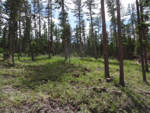 Tract 2 S Placid Lake Rd, Seeley Lake, Other-See Remarks, MT 59868 (MLS #277637) :: Realty Billings