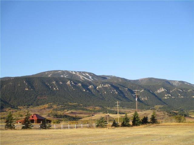 5 Creek Hill Lane, Red Lodge, MT 59068 (MLS #279014) :: Realty Billings