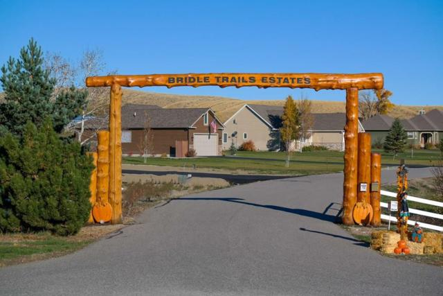 LOT 7 Bridle Trails Dr, Joliet, MT 59041 (MLS #279151) :: Realty Billings