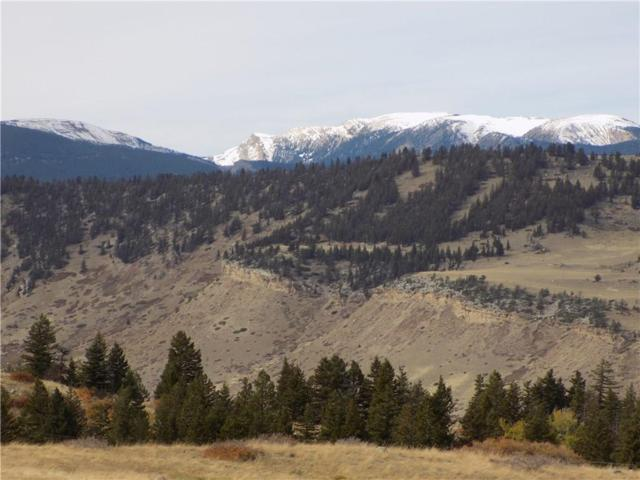 Lot 12-13 Pishkun Road, Nye, MT 59061 (MLS #280420) :: Realty Billings