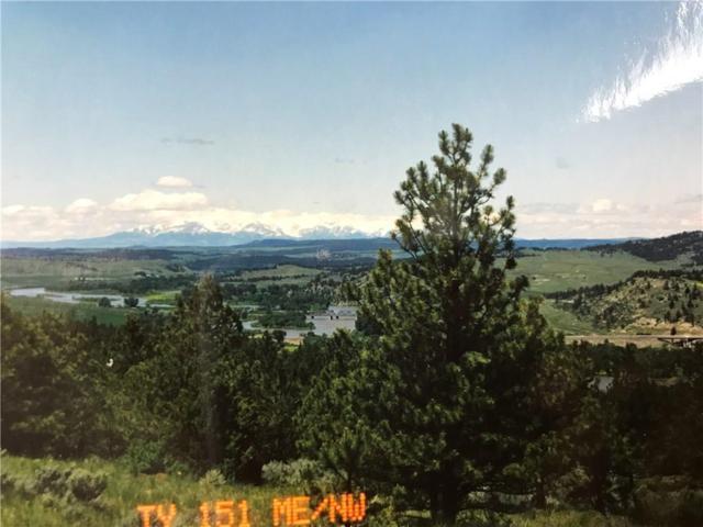 Lot 148 & 151 Lynx Trail, Reed Point, MT 59069 (MLS #280712) :: The Ashley Delp Team
