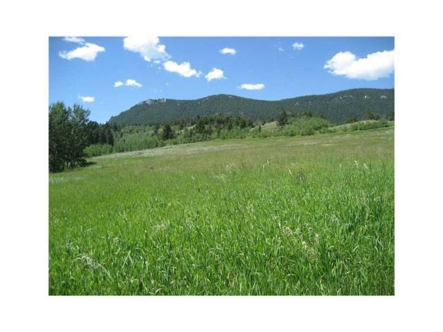 Tract 1 Wade Road, Red Lodge, MT 59068 (MLS #281474) :: Realty Billings