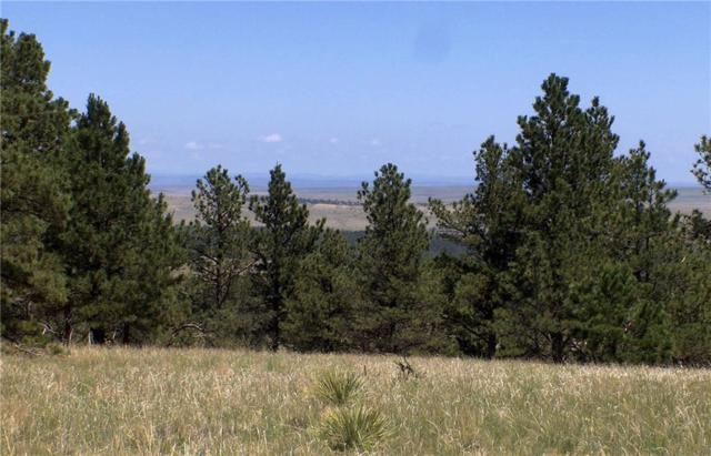 nhn Canyon View Rd, Lusk, Wyoming, Other-See Remarks, MT 82225 (MLS #281647) :: Realty Billings