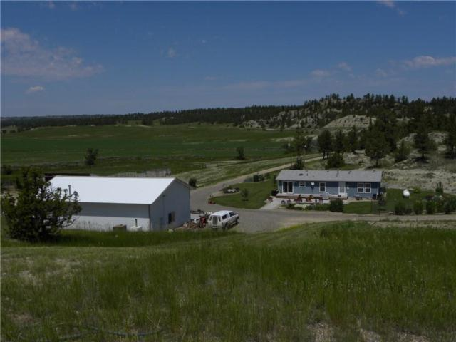 415 Horsethief Road, Roundup, MT 59072 (MLS #281778) :: Search Billings Real Estate Group