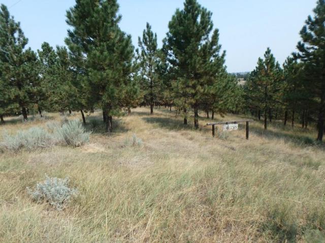 LOT 6 Indian Ridge Road, Billings, MT 59101 (MLS #282063) :: Search Billings Real Estate Group