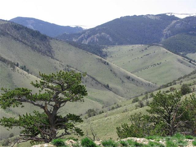 nhn Freedom Trail, Belfry, MT 59008 (MLS #283233) :: Realty Billings