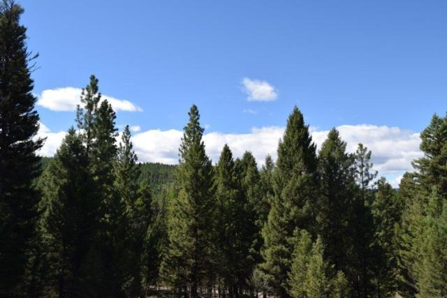 266 Leota Peak Ct, Seeley Lake, Other-See Remarks, MT 59868 (MLS #283663) :: Realty Billings