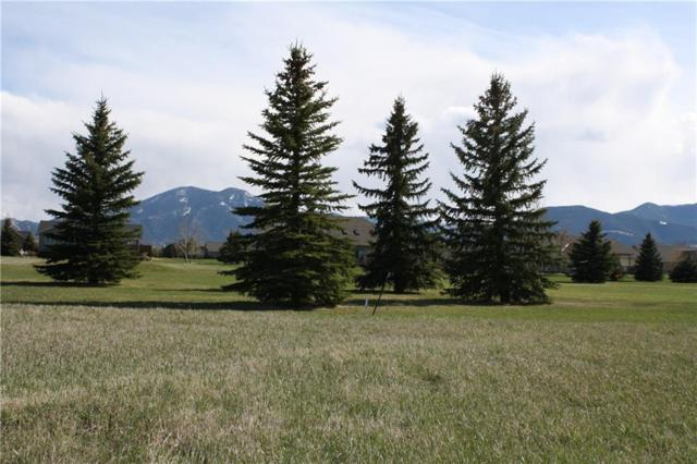 48 Sundog Court, Red Lodge, MT 59068 (MLS #283745) :: Realty Billings