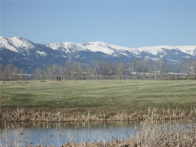 Lot 21 Horseshoe Trail, Red Lodge, MT 59068 (MLS #284021) :: Realty Billings