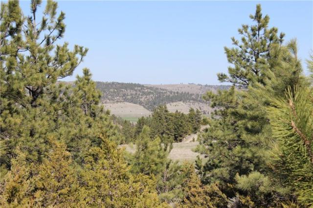 Lot 79 & 80 Haystack Coulee, Reed Point, MT 59069 (MLS #284057) :: The Ashley Delp Team