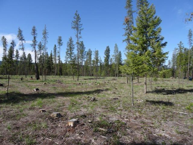 Lot 34 Timberlane, Seeley Lake, Other-See Remarks, MT 59868 (MLS #284122) :: Realty Billings