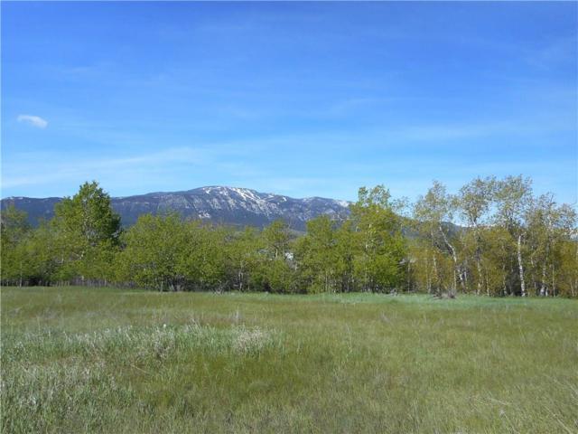 0 Red Lodge Creek Road, Red Lodge, MT 59068 (MLS #284419) :: Realty Billings