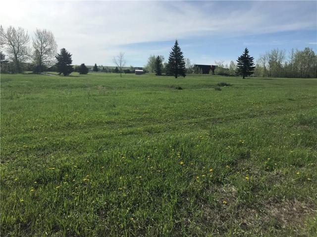 Lot 108 Silver Circle, Red Lodge, MT 59068 (MLS #284505) :: Search Billings Real Estate Group