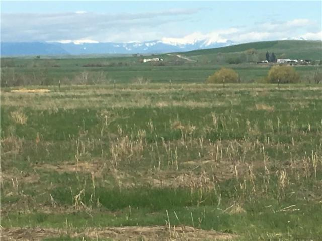 Dot Calm Ranches Laptop Loop/Back Up, Roberts, MT 59068 (MLS #285640) :: Realty Billings
