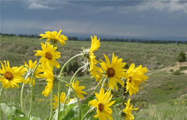 17 Grassland Way, Roundup, MT 59072 (MLS #285921) :: Realty Billings