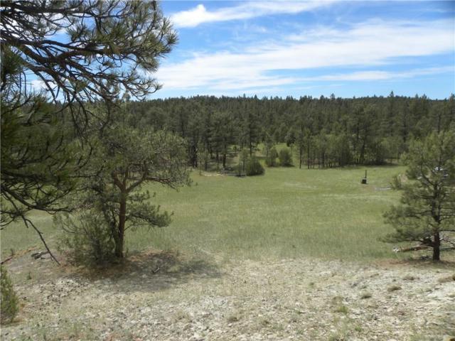 0 Springfield Trail, Roundup, MT 59072 (MLS #286010) :: Realty Billings