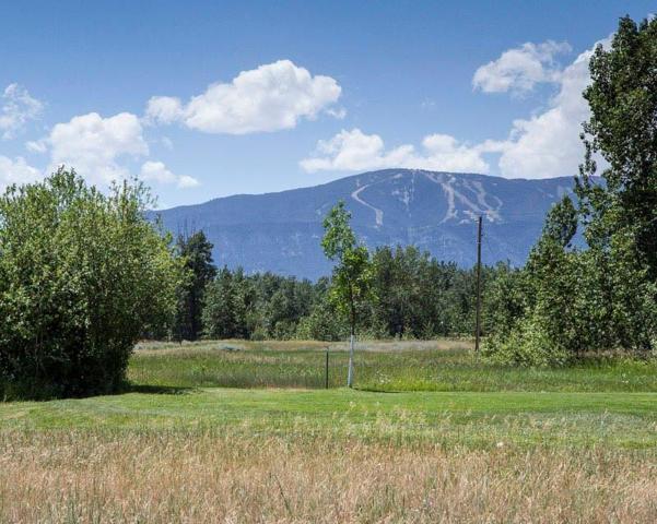 LOT 3 Hwy 12, Red Lodge, MT 59068 (MLS #286068) :: Realty Billings