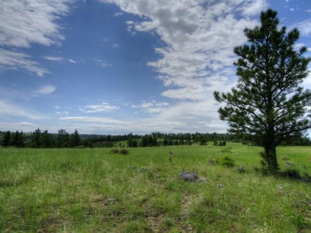 300 S Bender Road S, Roundup, MT 59072 (MLS #286264) :: Search Billings Real Estate Group