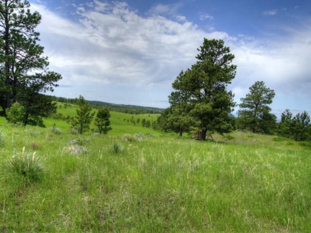 302 S Bender Road S, Roundup, MT 59072 (MLS #286266) :: Search Billings Real Estate Group