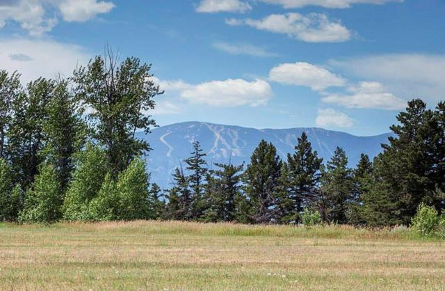 LOT 12 Paradise Meadows, Roberts, MT 59070 (MLS #286358) :: Search Billings Real Estate Group