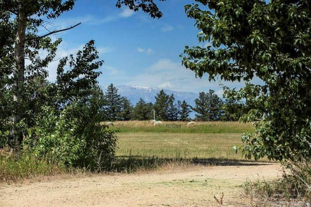 LOT 29 Paradise Meadows, Roberts, MT 59070 (MLS #286362) :: Search Billings Real Estate Group