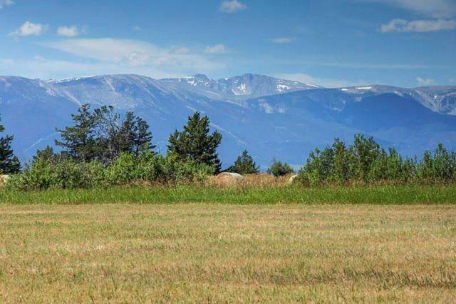 LOT 37 Paradise Meadows, Roberts, MT 59070 (MLS #286375) :: Search Billings Real Estate Group