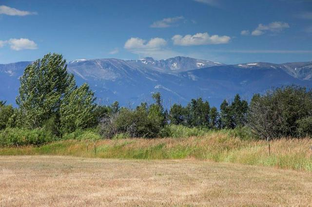 LOT 41 Paradise Meadows, Roberts, MT 59070 (MLS #286376) :: Search Billings Real Estate Group