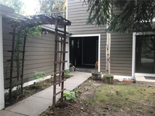 56 Shadow Place, Billings, MT 59102 (MLS #286434) :: Realty Billings