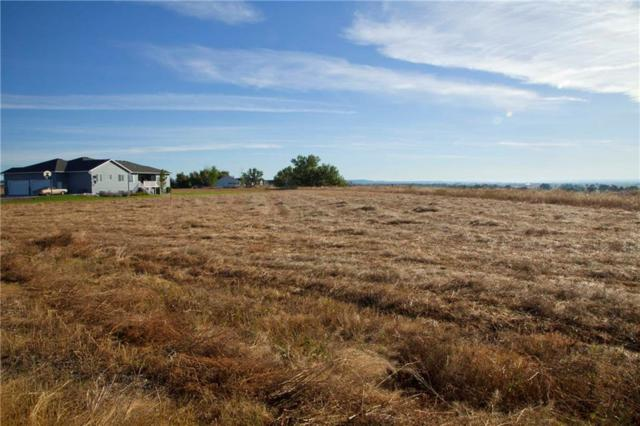7605 Eagle Bend Blvd Boulevard, Shepherd, MT 59079 (MLS #286904) :: Realty Billings