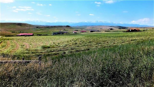 TBD Lot #8 Crow Chief Meadows, Absarokee, MT 59001 (MLS #287245) :: Realty Billings