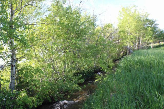 LOT 37 Meadow Circle, Red Lodge, MT 59068 (MLS #294563) :: MK Realty