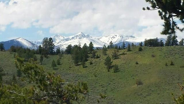 Tract 2 & 3 Turnback Trail, Red Lodge, MT 59068 (MLS #294811) :: The Ashley Delp Team