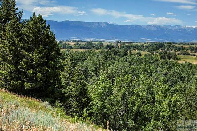 NSN Paradise Meadows Subdivision, Red Lodge, MT 59068 (MLS #297965) :: Search Billings Real Estate Group