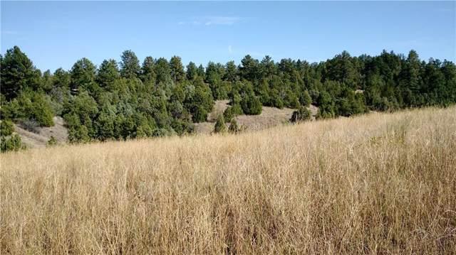 2415 Glengarry Lane, Billings, MT 59101 (MLS #300399) :: Search Billings Real Estate Group