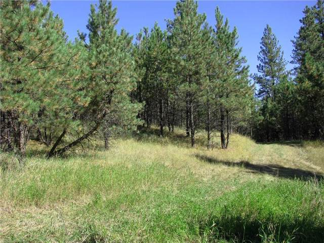 NHN Bobcat Ln, Roundup, MT 59072 (MLS #300982) :: MK Realty