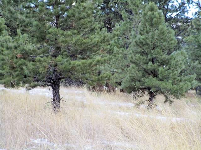 Lot 14 Whispering Pines Subd., Columbus, MT 59019 (MLS #302397) :: MK Realty