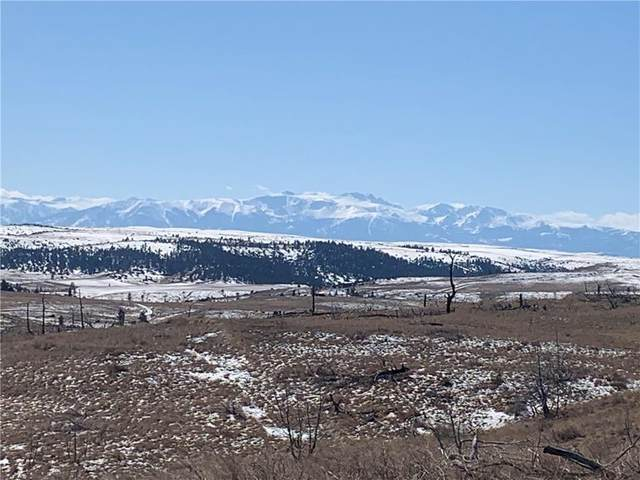 Lot 217 Arrowhead Ridge, Columbus, MT 59019 (MLS #302941) :: MK Realty
