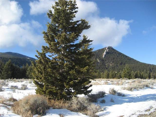LOT 20 Madison Ln & Palisades Campground Rd, Red Lodge, MT 59068 (MLS #303016) :: The Ashley Delp Team