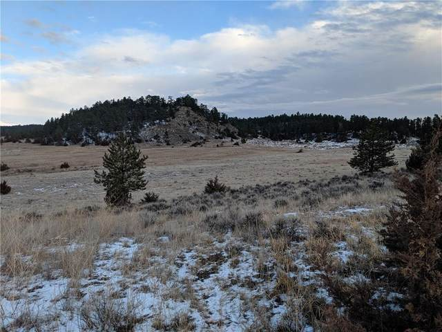 80 Chickadee Road, Lavina, MT 59046 (MLS #303576) :: MK Realty
