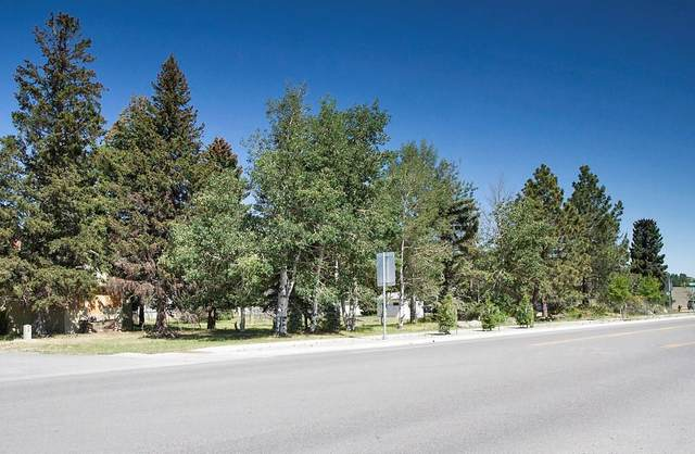TRACT B Broadway Ave N, Red Lodge, MT 59068 (MLS #304014) :: MK Realty