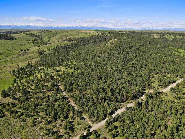 80 Haystack Coulee, Reed Point, MT 59069 (MLS #305354) :: MK Realty