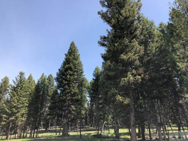 147 Seclusion Point, Seeley Lake, Other-See Remarks, MT 59868 (MLS #305743) :: MK Realty