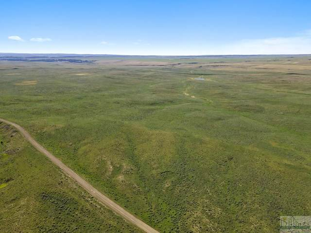 TBD Buffalo Trail Rd, Lavina, MT 59046 (MLS #308775) :: Search Billings Real Estate Group